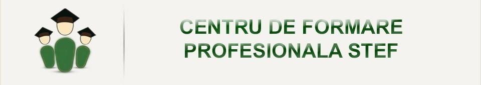 Centrul de formare profesionala STEF